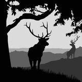 Monotonic illustration of two elks. On a landscape Stock Photos