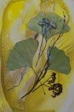 Monotypowy i florystyczny kolaż Obraz Stock