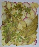Monotypowy i florystyczny kolaż Zdjęcia Royalty Free
