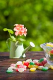 Monpase and flowers in can on table in garden. Focus on candy Royalty Free Stock Photo