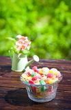 Monpase and flowers in can on table in garden. Focus on candy Stock Photos