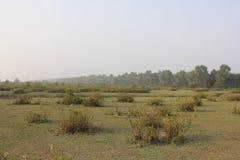 Monpura海岛自然秀丽  库存图片
