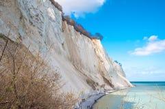 Mons Klint cliff in Denmark stock images