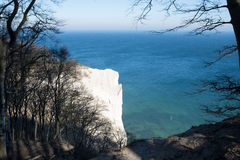 Mons Klint in Denmark Royalty Free Stock Photo