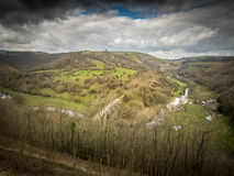 Monsal head Royalty Free Stock Image