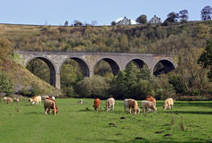 Monsal Head Viaduct, Monsaldale, Derbyshire Royalty Free Stock Image