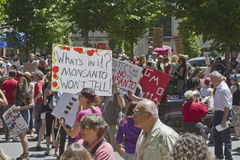Monsanto and Genetically Modified Food Protesters At a Rally in Stock Photos