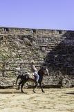 MONSARAZ - 6 DE ABRIL: Entrenamiento del caballo en la ciudad de Alentejo de Monsaraz Imagen de archivo