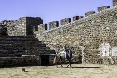 MONSARAZ - 6 DE ABRIL: Entrenamiento del caballo en la ciudad de Alentejo de Monsaraz Imagen de archivo libre de regalías