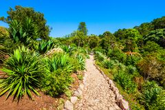 Free Monserrate Palace Garden In Sintra, Portugal Royalty Free Stock Photo - 183619465