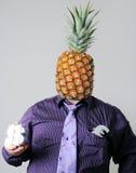 Monsieur Ananas image libre de droits