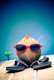 Monsieur de noix de coco visitant le pays à l'extérieur Image libre de droits