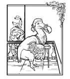 Monsieur Dodo das aventuras de Alice no país das maravilhas Tração g da mão Foto de Stock Royalty Free