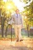 Monsieur supérieur marchant en parc, un jour ensoleillé en automne Photo stock