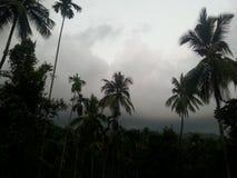 monsone immagine stock