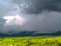 Monsoni alla foresta nazionale di Tonto Immagine Stock