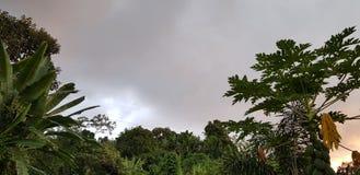 monsoon imagem de stock