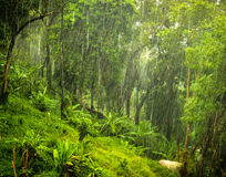 monsoon Imagem de Stock Royalty Free