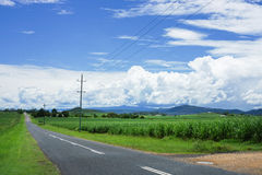 Monsoon clouds over field of sugar cane. Tropical North Queensland sugar cane fields with hills in the background Royalty Free Stock Photos