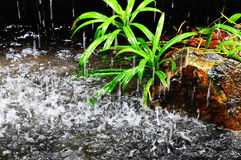 Monsoon rain. Picture of raindrops due to monsoon rains royalty free stock image