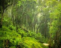 Monsoon Royalty Free Stock Image