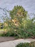 After Monsoon Storm Royalty Free Stock Photo