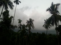 Monsoon. Wee hours in malabar with impending rain Stock Image