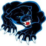 Monster blackl and blue puma cat Stock Photo