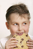 Monster cookie. Boy with a very large cookie. A few crumbs on his face Stock Photography