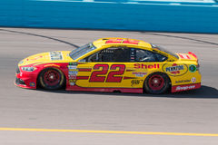 Monster Energy NASCAR Cup driver Joey Logano Royalty Free Stock Photo