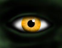 Monster eye. Close up monster eye yellow Stock Images