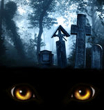 Monster eyes, medieval stone crosses and tombstones, cemetery in. A look from darkness. Yellow monster eyes and medieval stone crosses and tombstones in a Stock Images