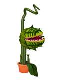 Monster flower Royalty Free Stock Images
