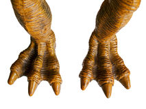 Monster foot Stock Photo