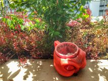 Monster jar in the little garden Royalty Free Stock Photography