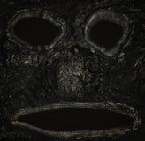 Monster muzzle of wood bark close up royalty free stock photo