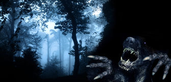 Monster in night forest. Spooky monster in foggy forest Stock Photography