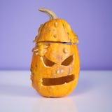 Monster Pumpkin Stock Photos