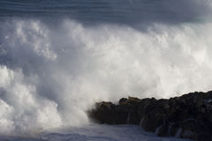 Monster wave. (face of Monster wave left side) A monster wave crashing against the North Shore of the island of O'ahu, Hawai'i, USA, on the morning of 21.I.15 Stock Photos