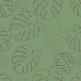Monstera конспектирует картину коричневых листьев безшовную Стоковое Изображение