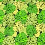 Monstera de néon da tendência das folhas tropicais Teste padrão sem emenda com as folhas tiradas mão de Monstera Relatório exótic ilustração do vetor