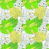 Monstera de néon da tendência das folhas tropicais Teste padrão sem emenda com as folhas tiradas mão de Monstera Relatório exótic ilustração stock