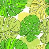 Monstera de néon da tendência das folhas tropicais Teste padrão sem emenda com as folhas tiradas mão de Monstera Relatório exótic ilustração royalty free