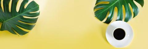Monstera deja la planta y la taza de café en fondo amarillo Aislado con el espacio de la copia bandera Foto de archivo