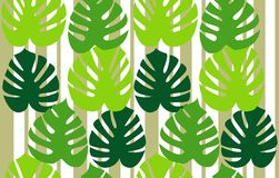 Monstera deliciosa floral background vector Royalty Free Stock Photography