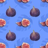 Monstera and figs watercolor tropical pattern on blue background royalty free illustration