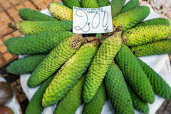 Monstera fruit market stock photography