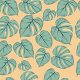 Monstera  green leaves seamless pattern on a yellow background Stock Photo