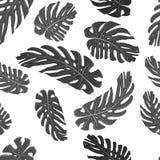 Monstera lässt nahtlosem Gewebe Schwarzweiss-Muster Satz Vektorelemente, für tropisches, exotisch, Sommerdesign lizenzfreie abbildung