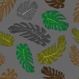 Monstera lässt nahtloses Textilmuster Satz Vektorelemente, für tropisches, exotisch, Sommerdesign lizenzfreie abbildung